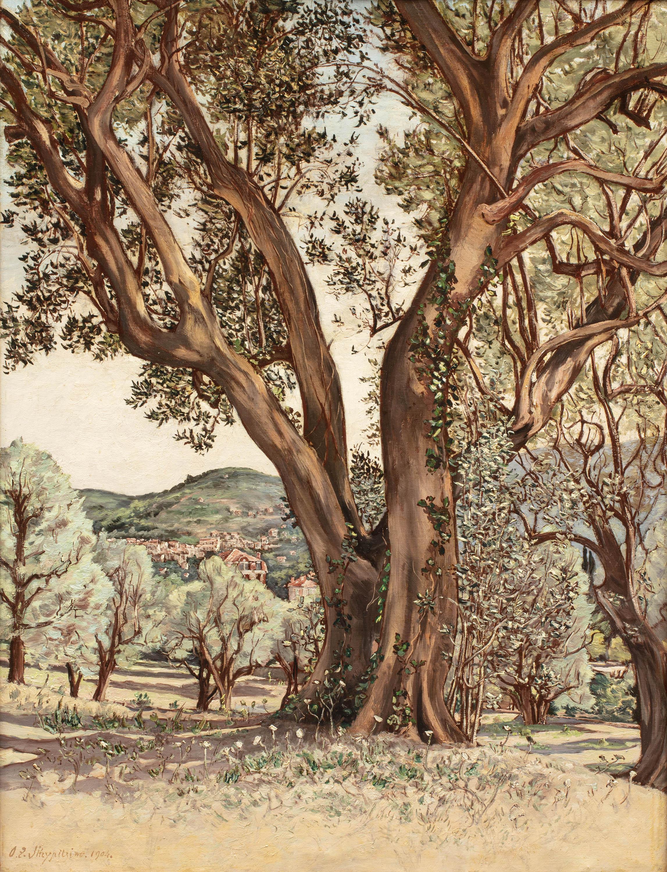 Eukaliptus, okolice Cannes, 1904