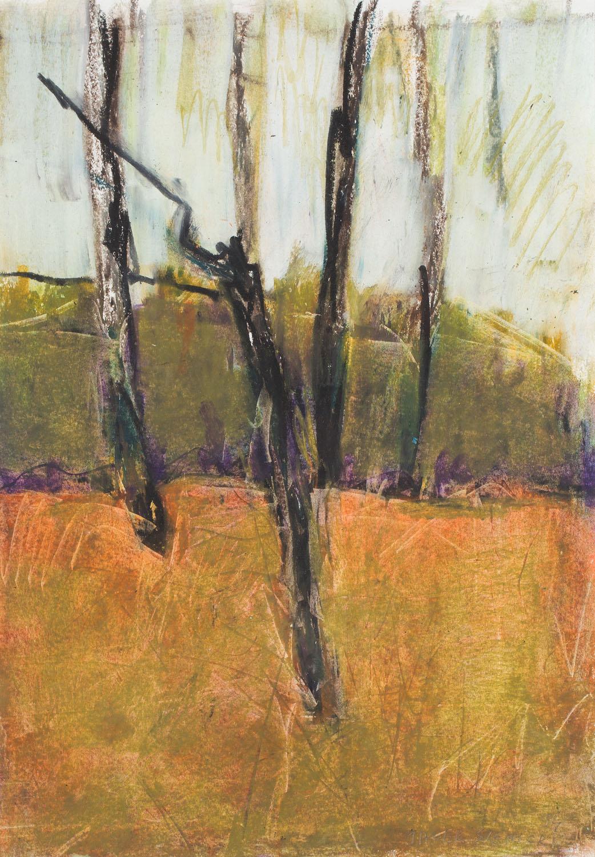 Drzewa, 1994