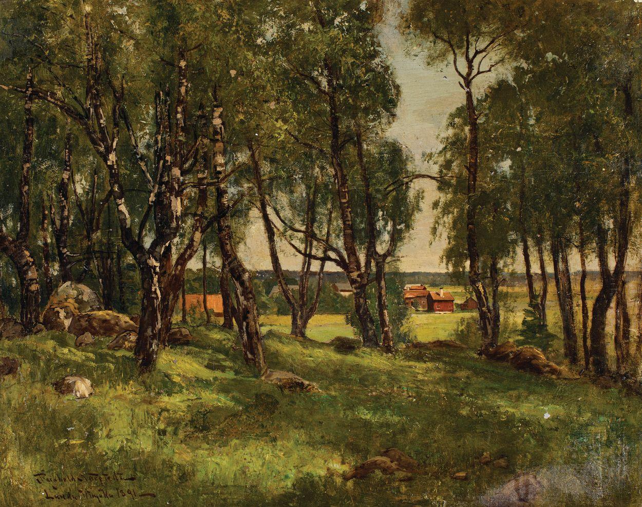 BRZOZOWY ZAGAJNIK, 1891