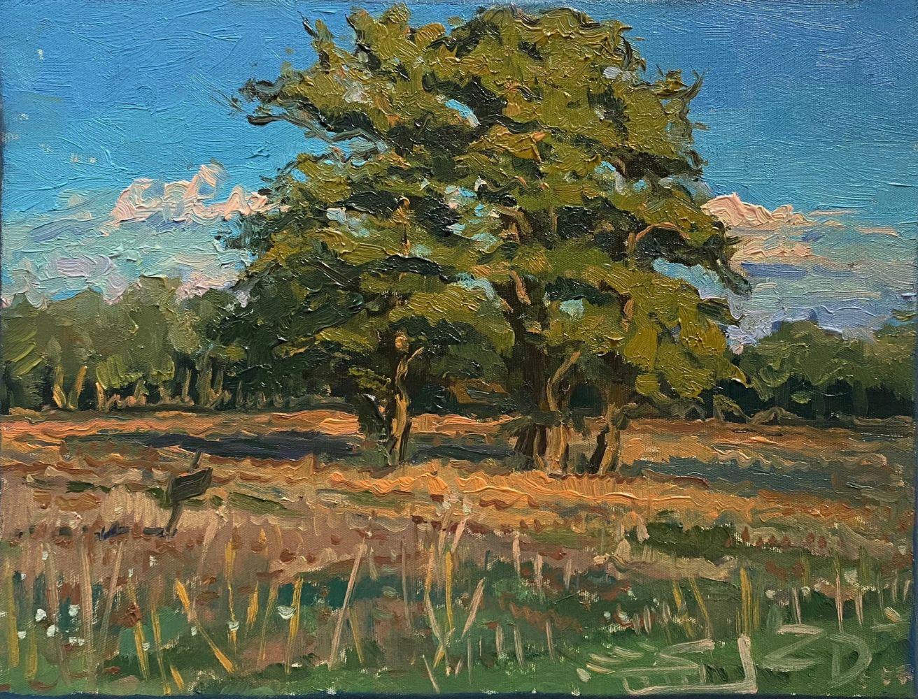 Studium drzew (2020)