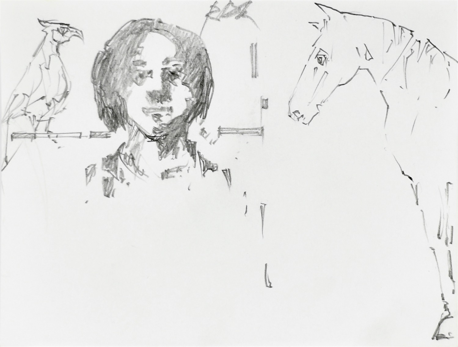 Szkice twarzy oraz papugi i konia