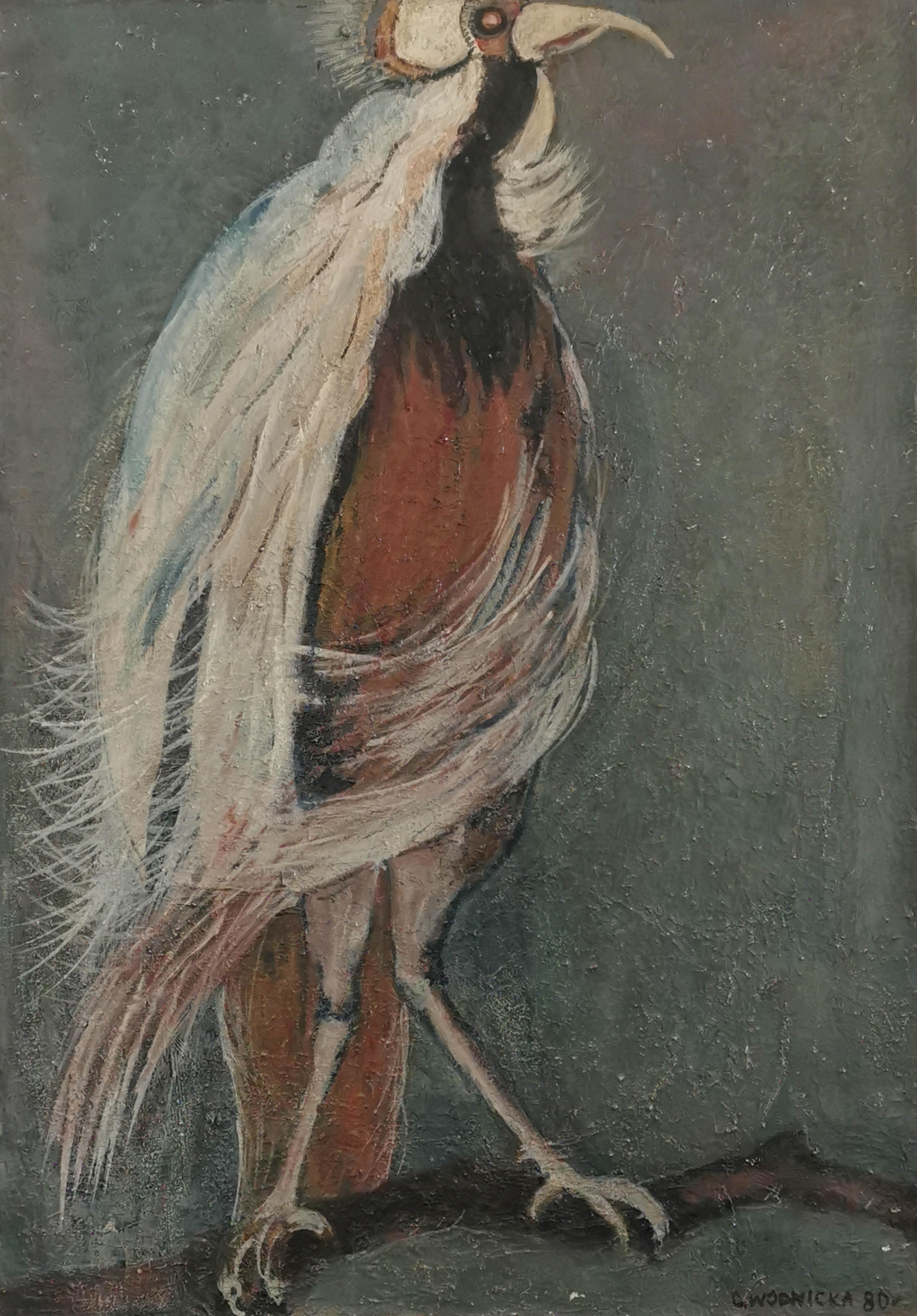 Ptak z ZOO, 1980