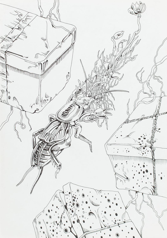 """Historia ogrodów"", 2008"