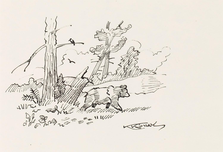 Niedźwiadek