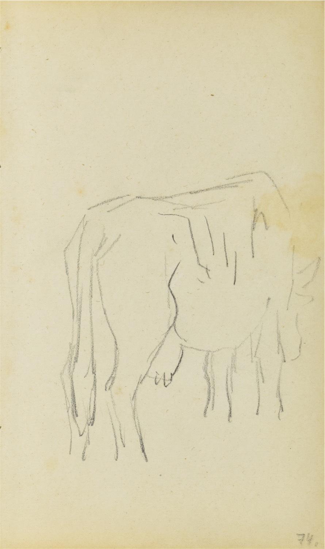 Szkic krowy widzianej z tylnego, prawego trzy-czwarte
