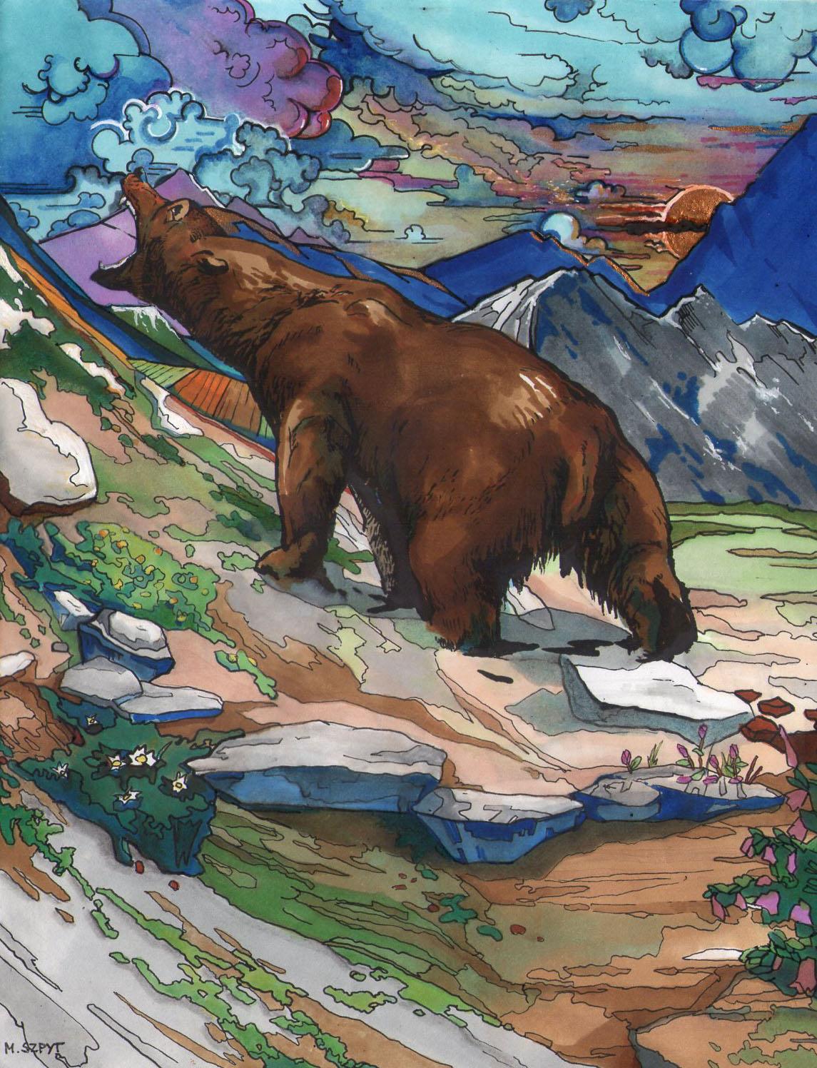 Niedźwiedź, 2020