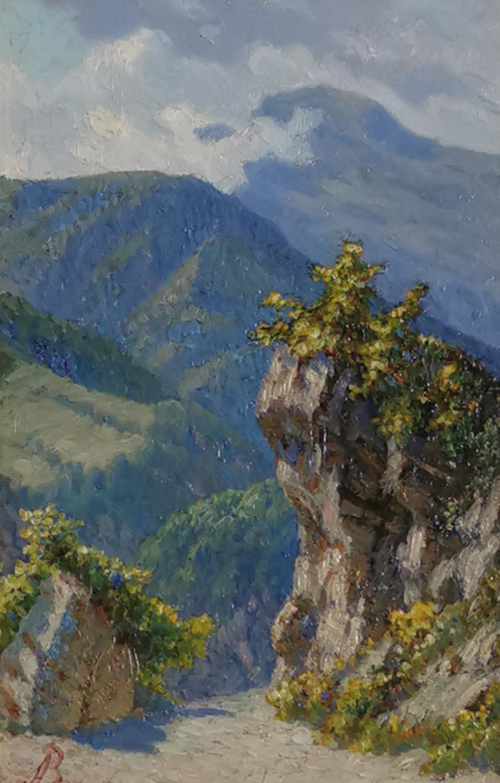 Ścieżka wśród gór