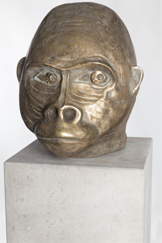 Małpa niemiecka, 2015-2018