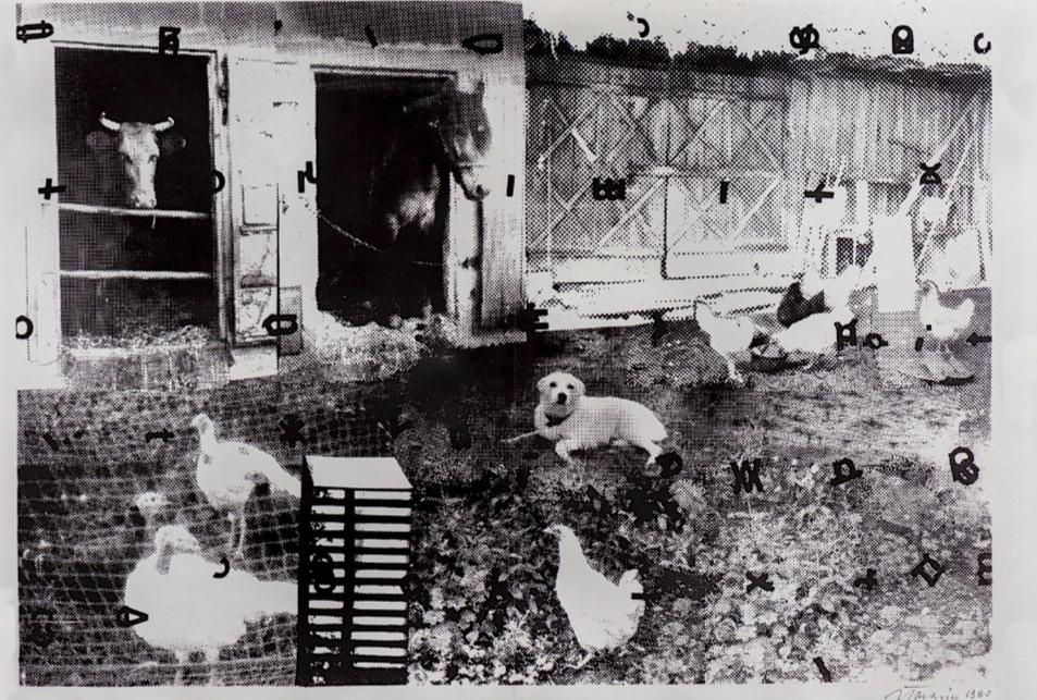 Wiejskie podwórko, 1976
