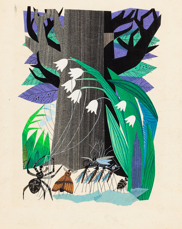 Pająk, ćma i komary, ilustracja