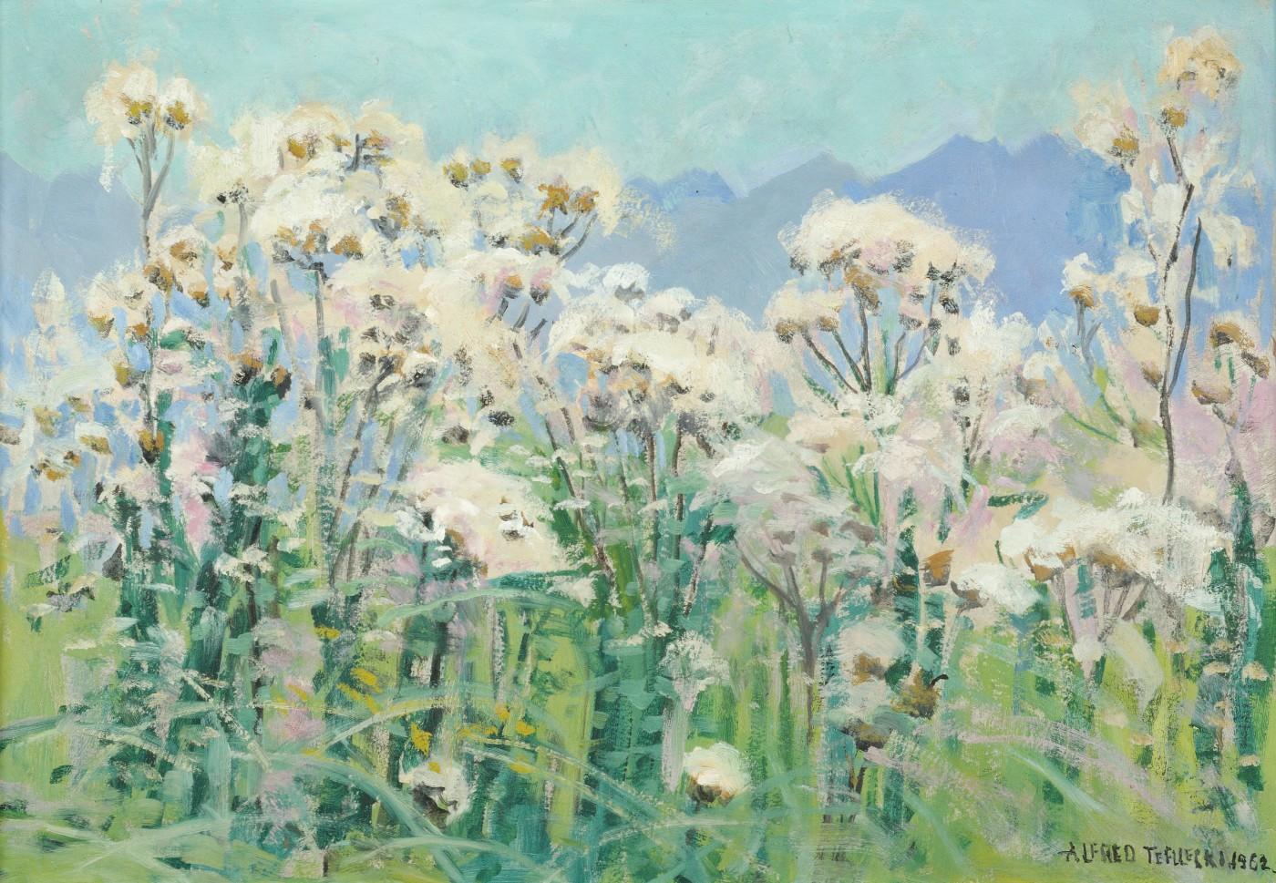 Kwitnące osty, 1962
