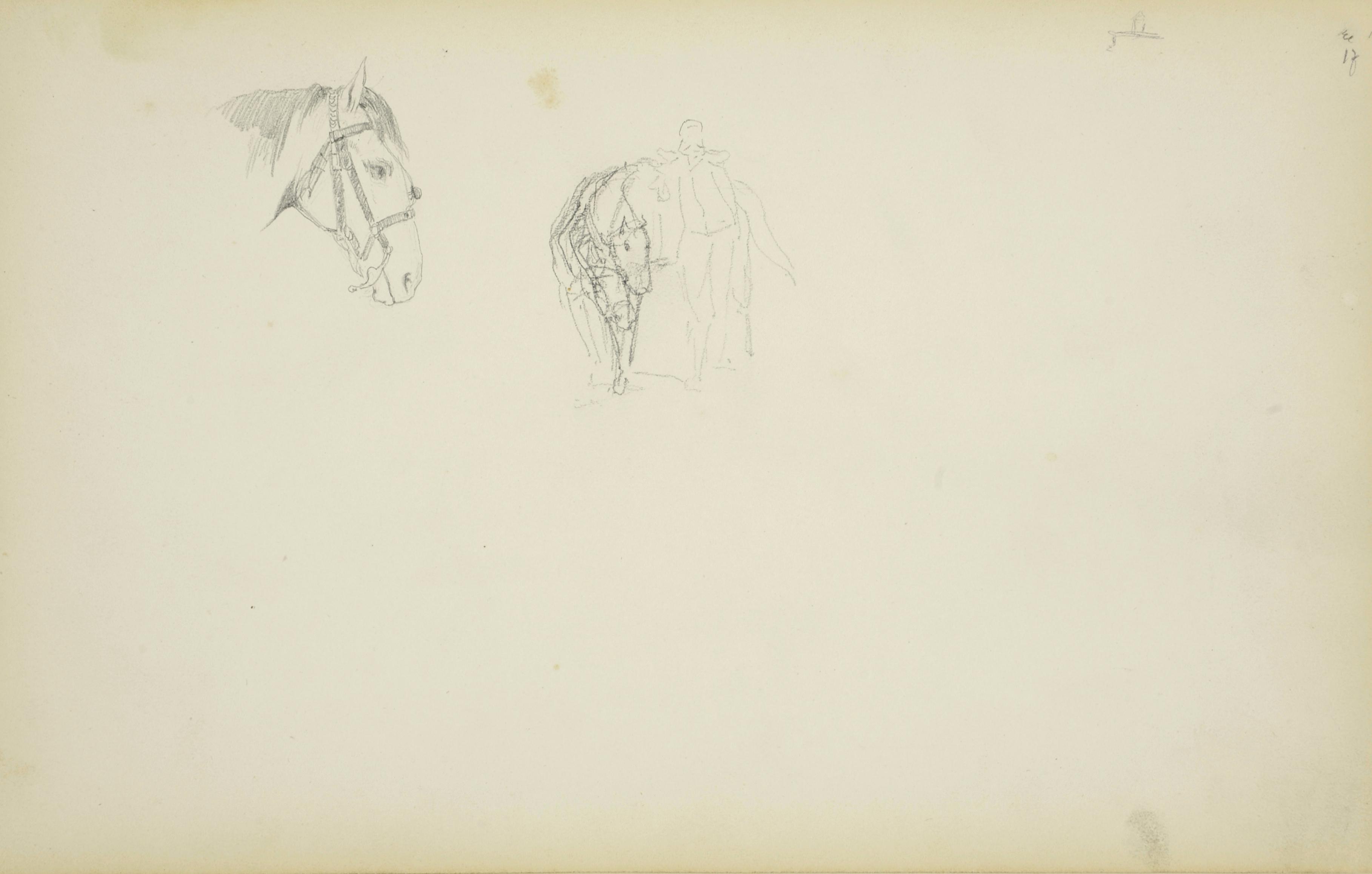 Głowa konia i szkic jeźdźca z koniem