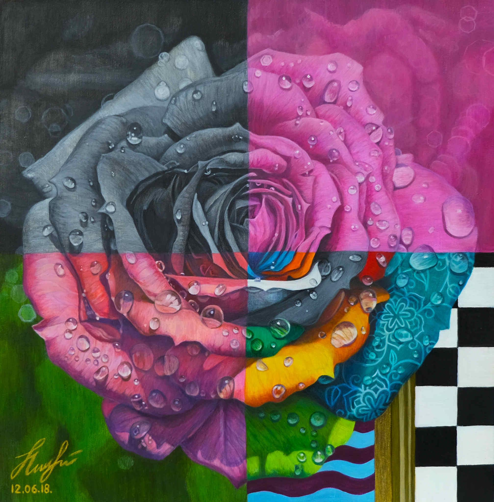 Róża, 2018