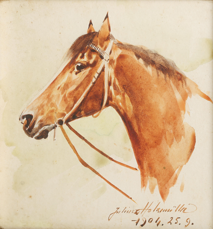 Głowa konia, 1904 r.