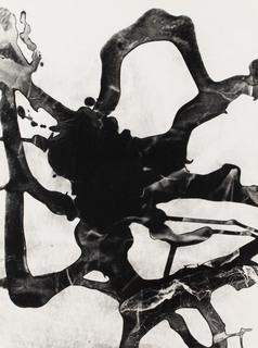 """""""Fotogram"""", 1957"""