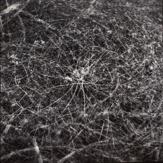 """Z cyklu: """"Z ciemności i ze światła"""" , 1995"""