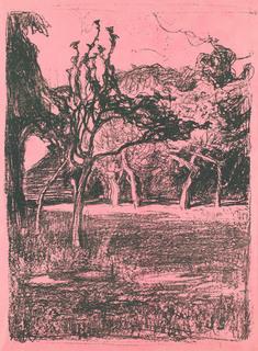 """""""Sad"""" (na różowym papierze), 1899"""