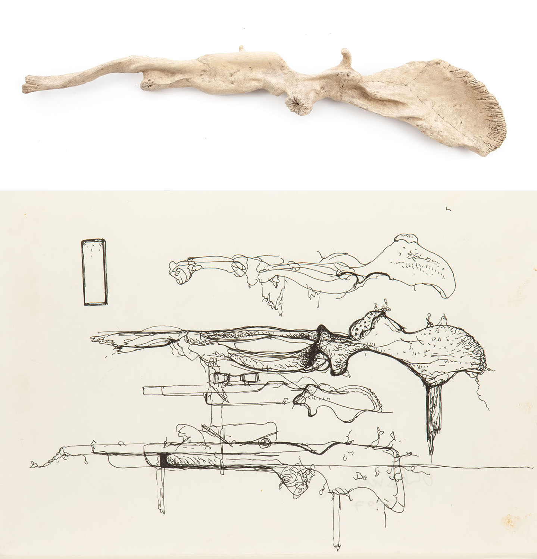 """""""Strzelba"""" (""""Broń ostateczna"""") z cyklu """"Trofea"""" oraz szkic do pracy , 2008"""