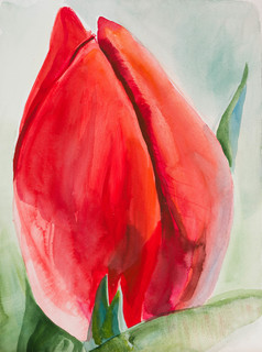 """""""Wielki tulipan"""", 2019"""