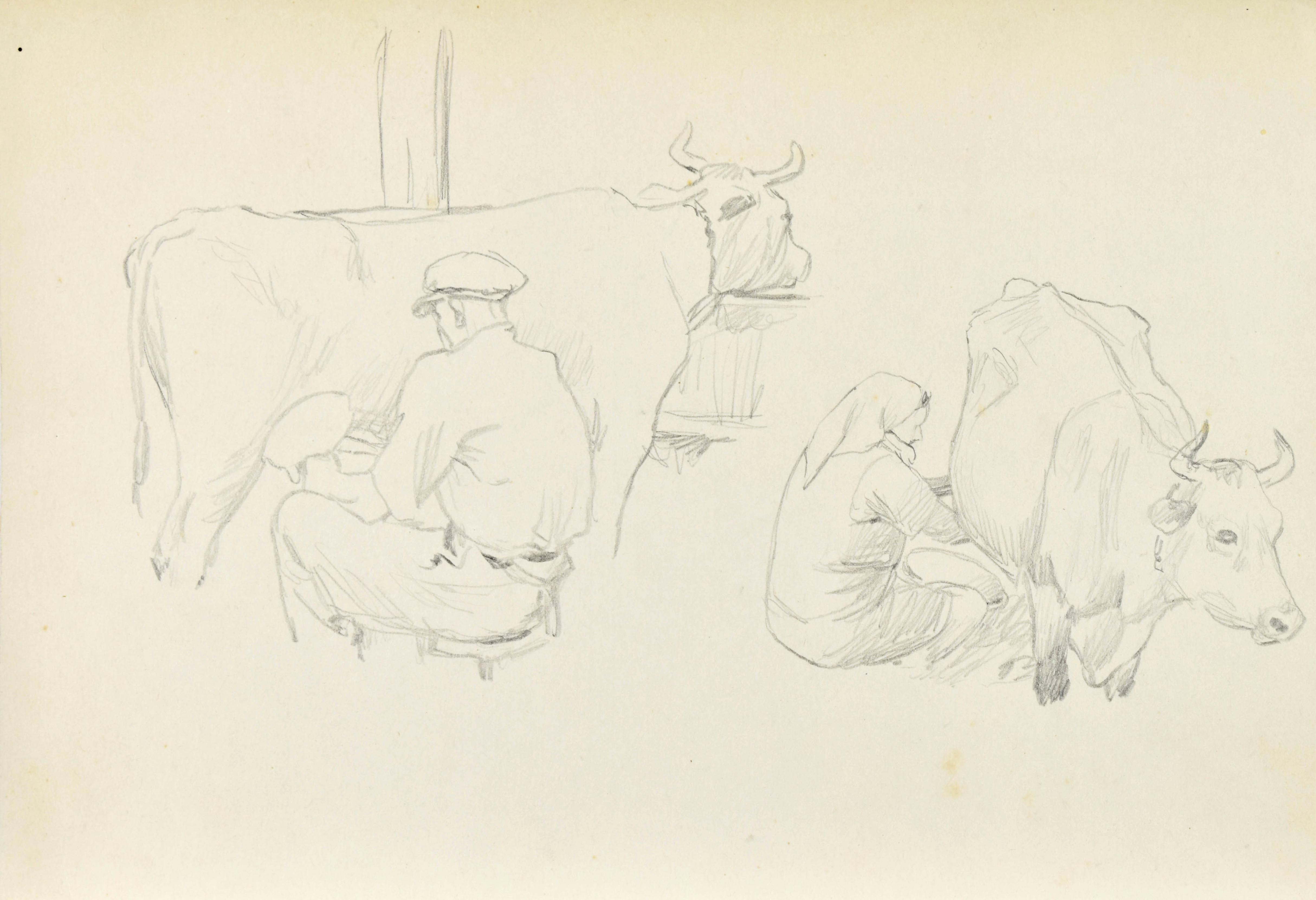 Dojenie krów – dwie sceny mężczyzna i kobieta dojący krowy