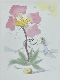 Kompozycja z kwiatem