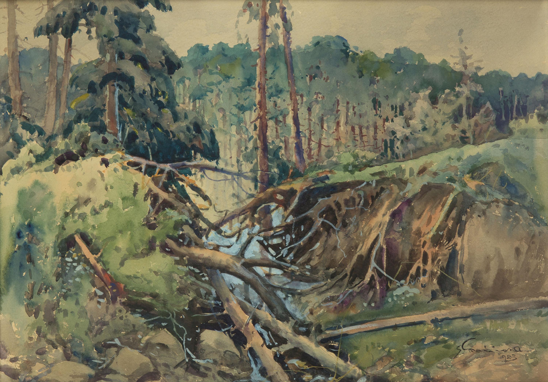 Pejzaż leśny, 1923 r.