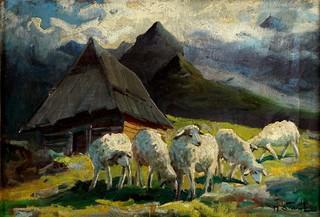 Owce przy góralskiej chacie