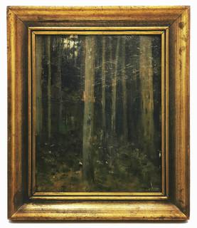 Wnętrze lasu