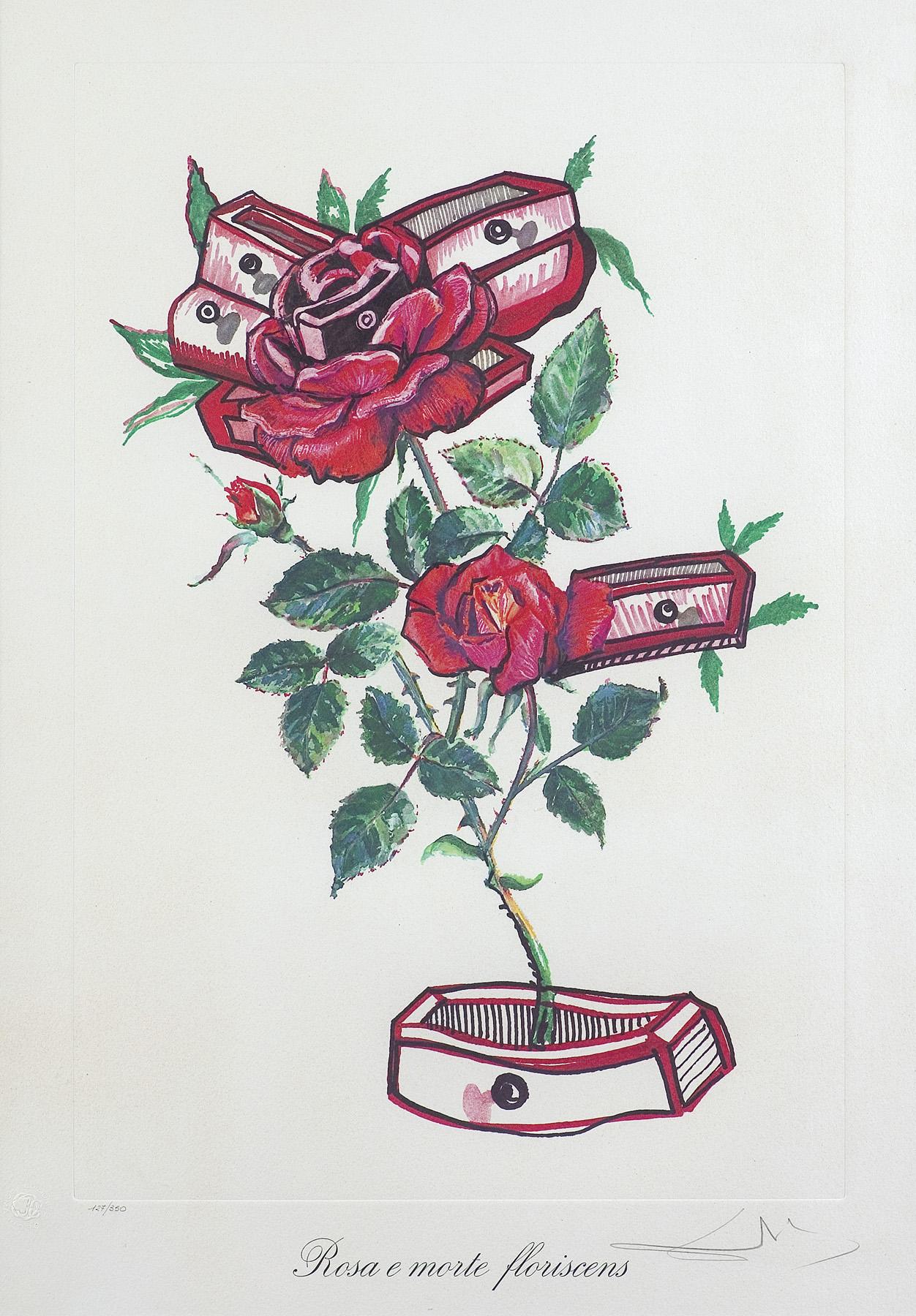 """ROSA E MORTE FLORISCENS, Z CYKLU """"SURREALISTYCZNE KWIATY"""", 1972"""