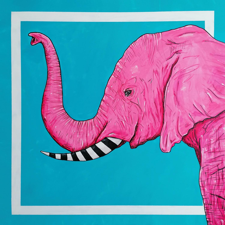 Różowy słoń, 2021