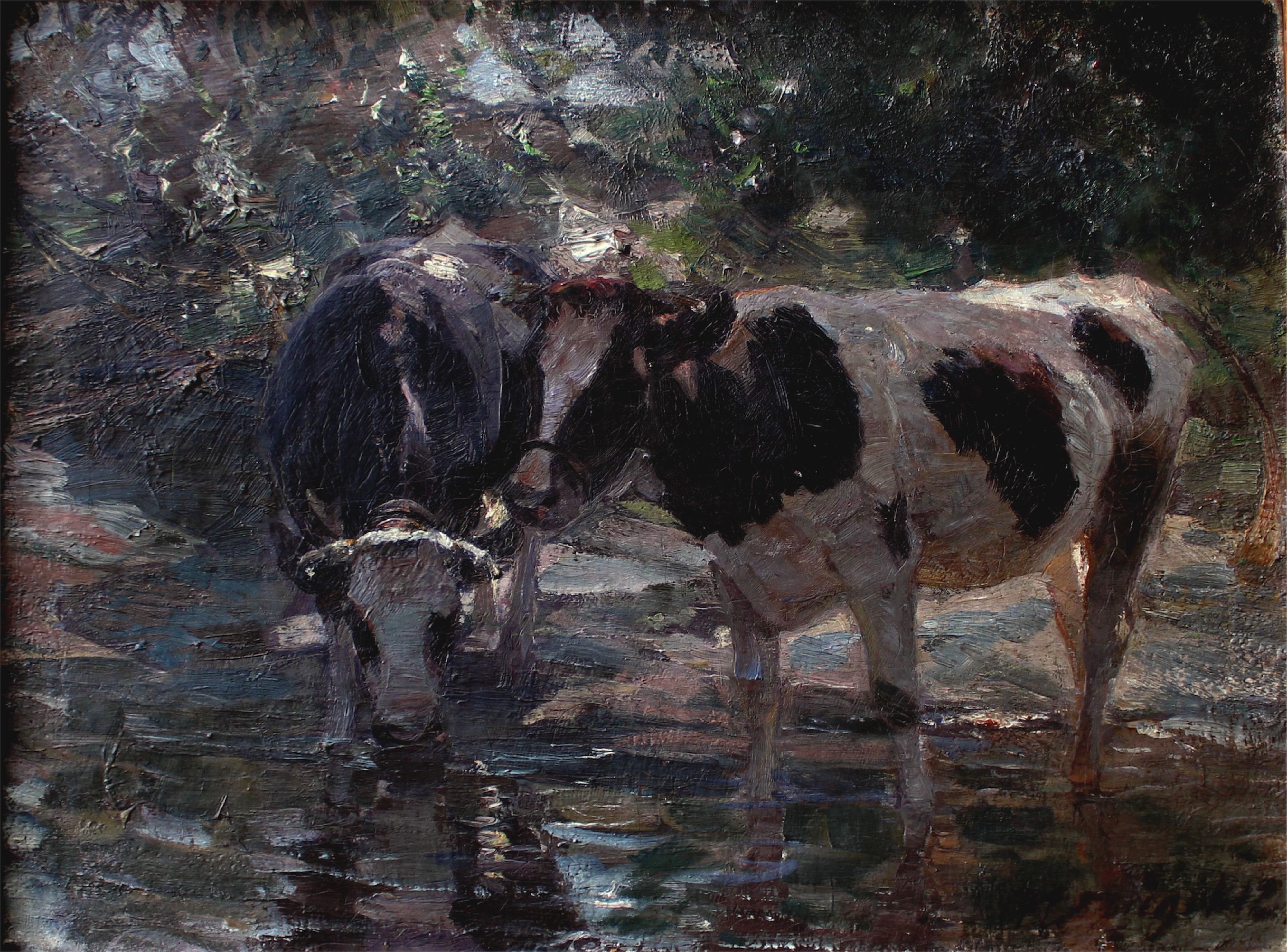 Krowy u wodopoju, 1912