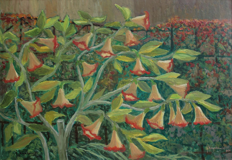 Datura w ogrodzie (1960)