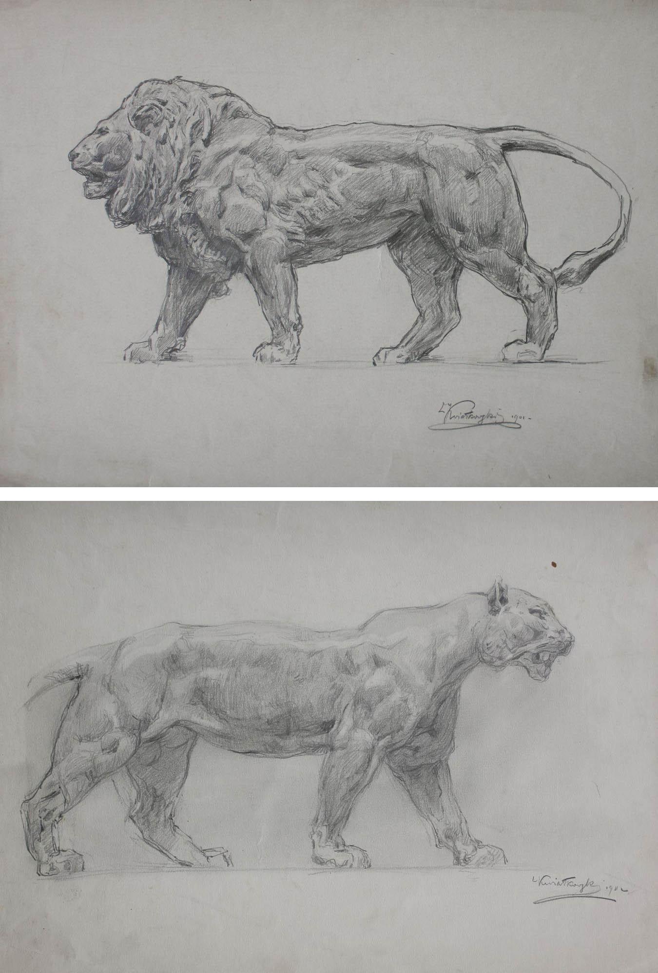 Lew i Lwica - para rysunków (1901-1902)
