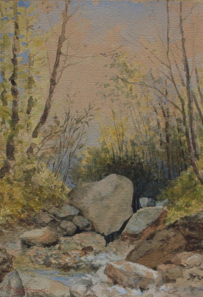 Kamienny potok (1890)