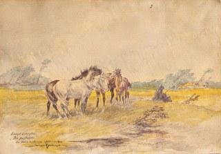 Stare konie na pastwisku, 1925