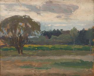 """Wśród pól (""""Studjum pejzażowe""""), 1904"""