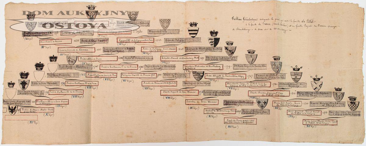 DRZEWO GENEALOGICZNE POTOMKÓW ADMIRAŁA GASPARDA II DE COLIGNY, Francja, po 1872