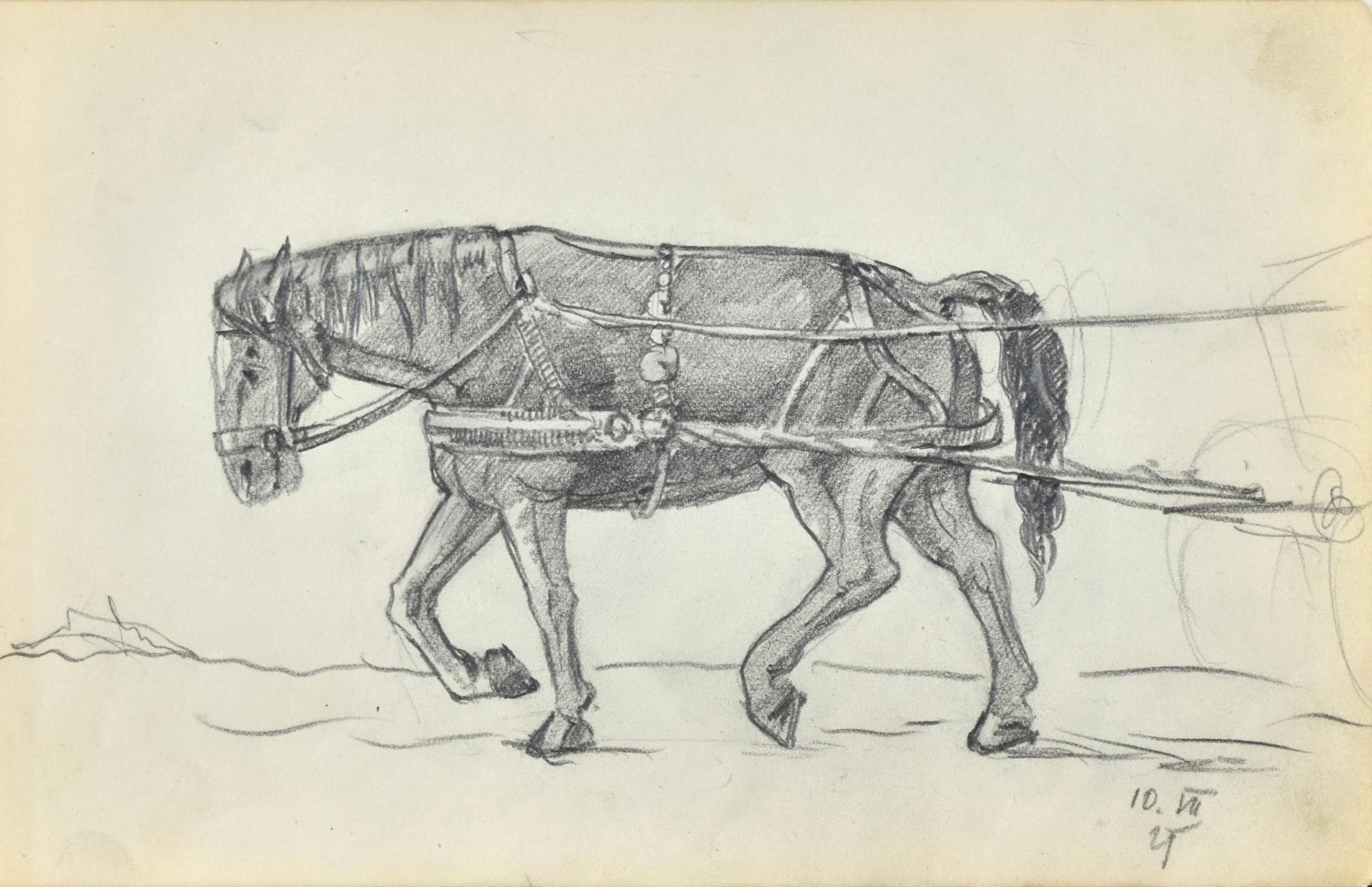 Koń w zaprzęgu, 1921