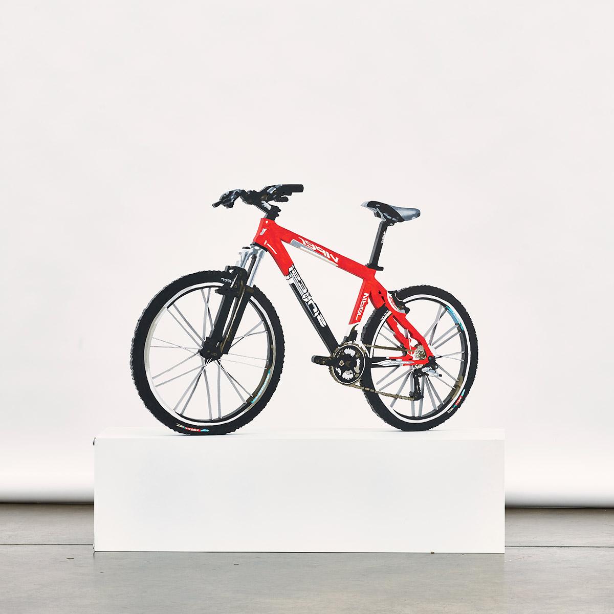 Hiperreal bicycle z cyklu Rzeczywistość jest płaska, 2010