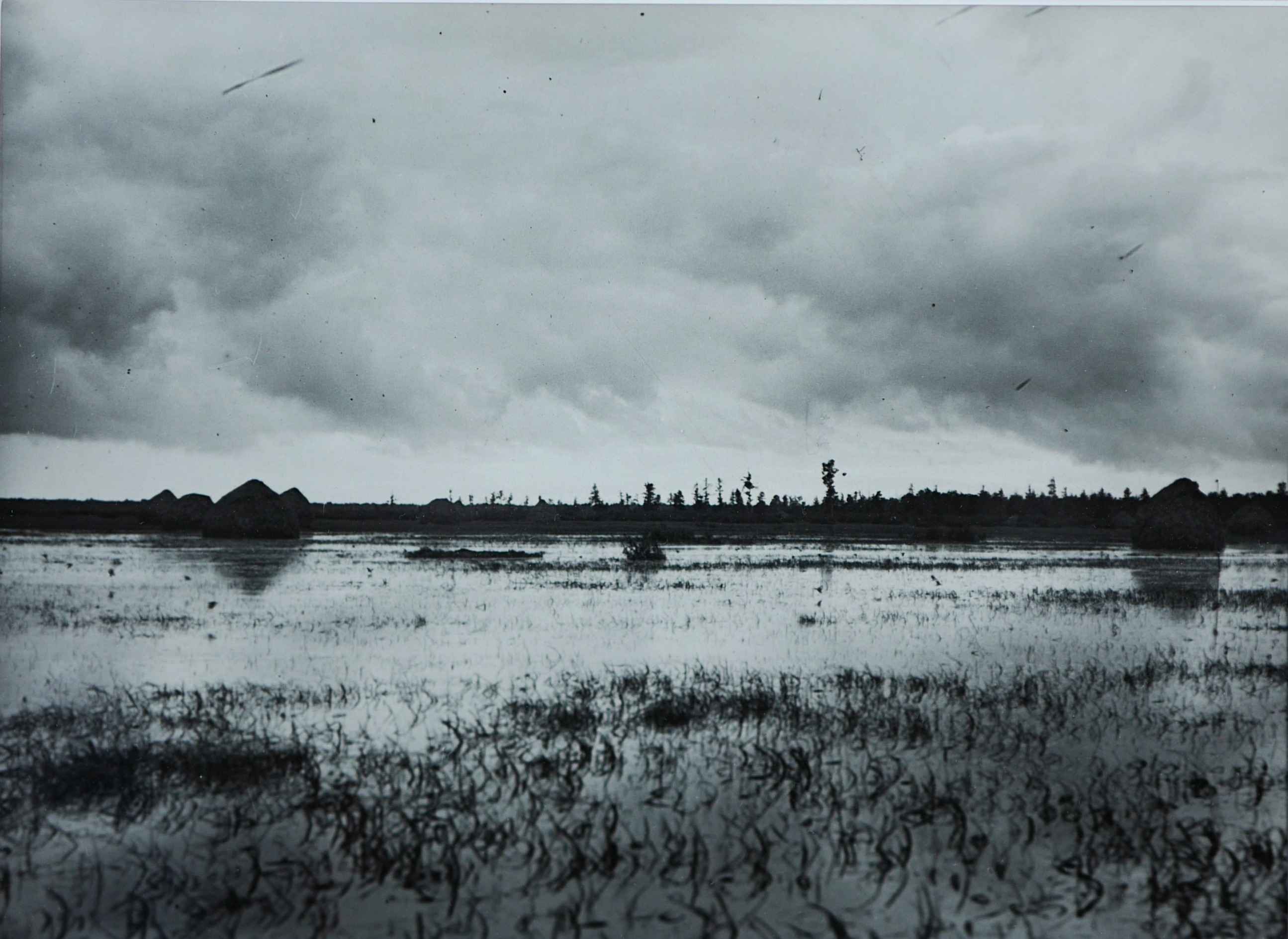Polesie, 1931 r.