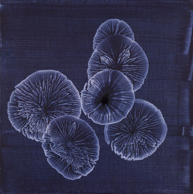 """Bez tytułu, z serii """"Kolonie"""", 2006"""