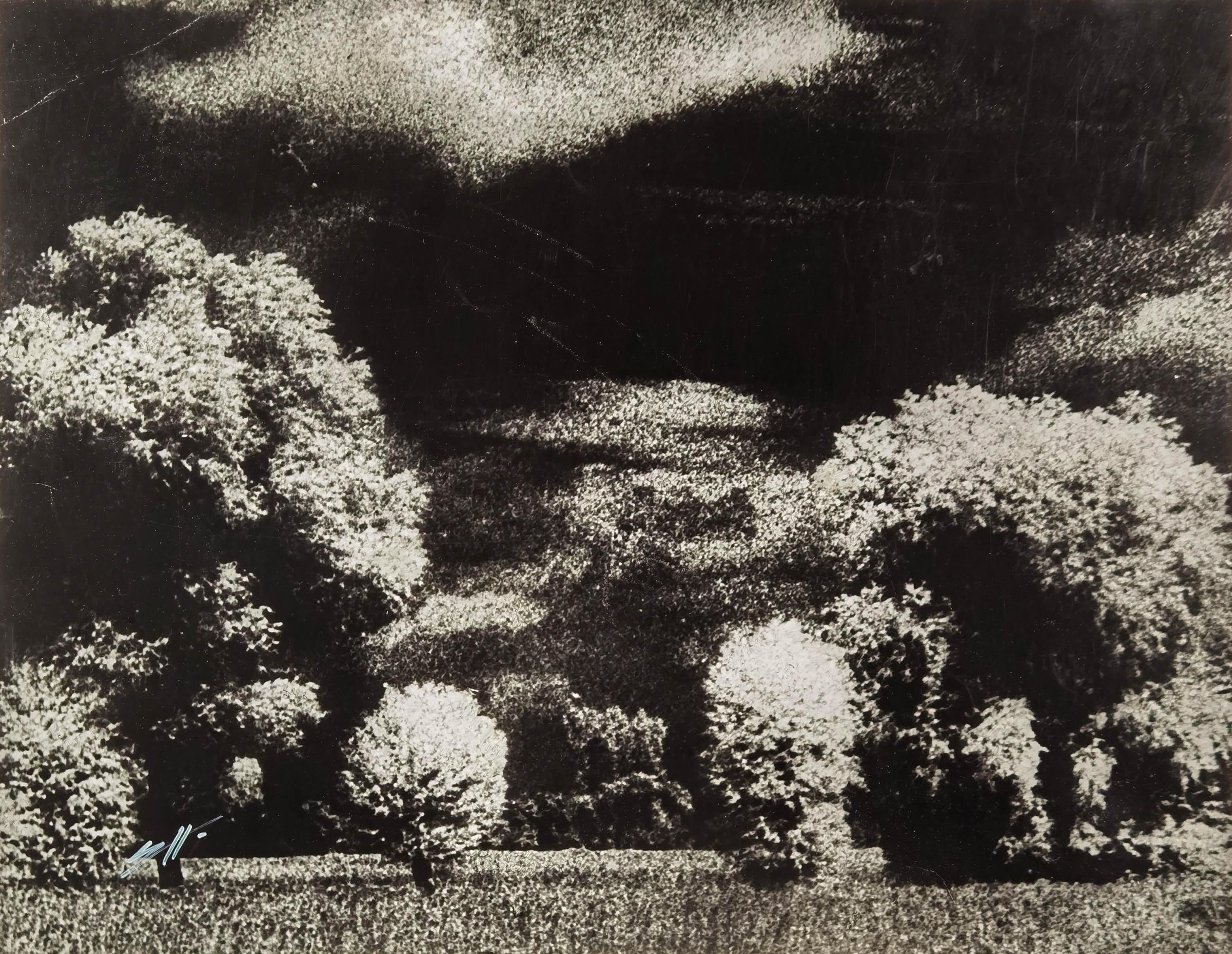 Krajobraz mazowiecki, 1952