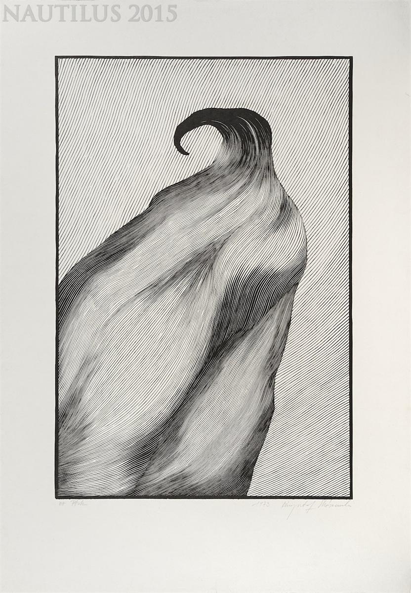 Ptak, 1973
