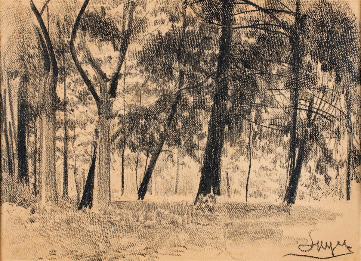 Grupa drzew w Gościeradzu