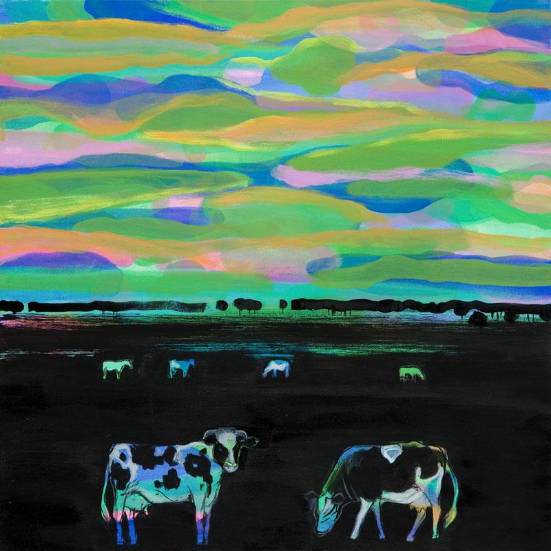 Krowy, 2015 r.