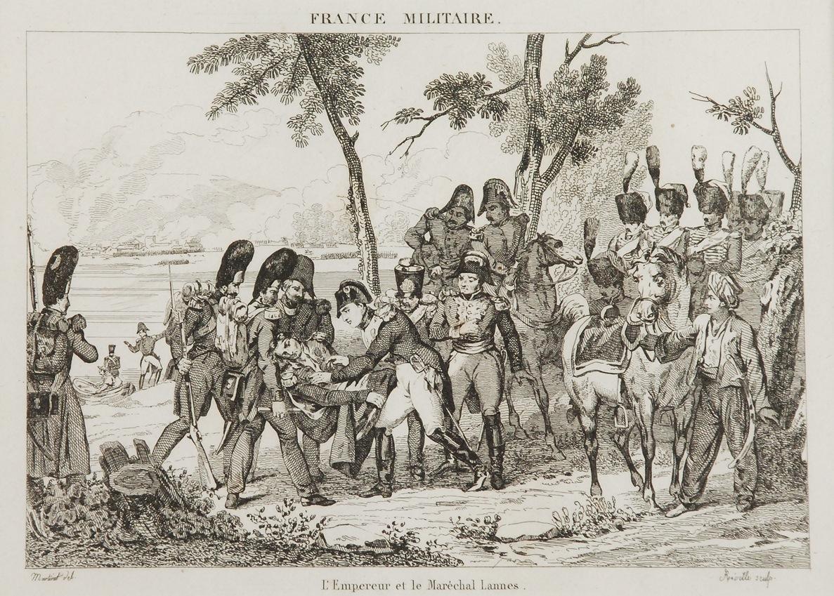 MARTINET według Jean-Baptiste REVILLE