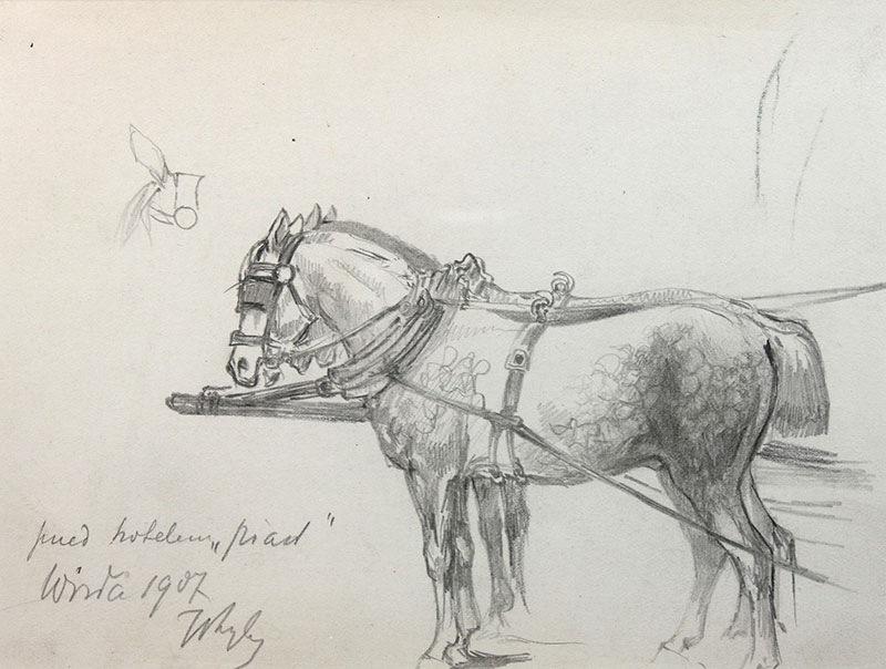 Konie w zaprzęgu, 1907 r.