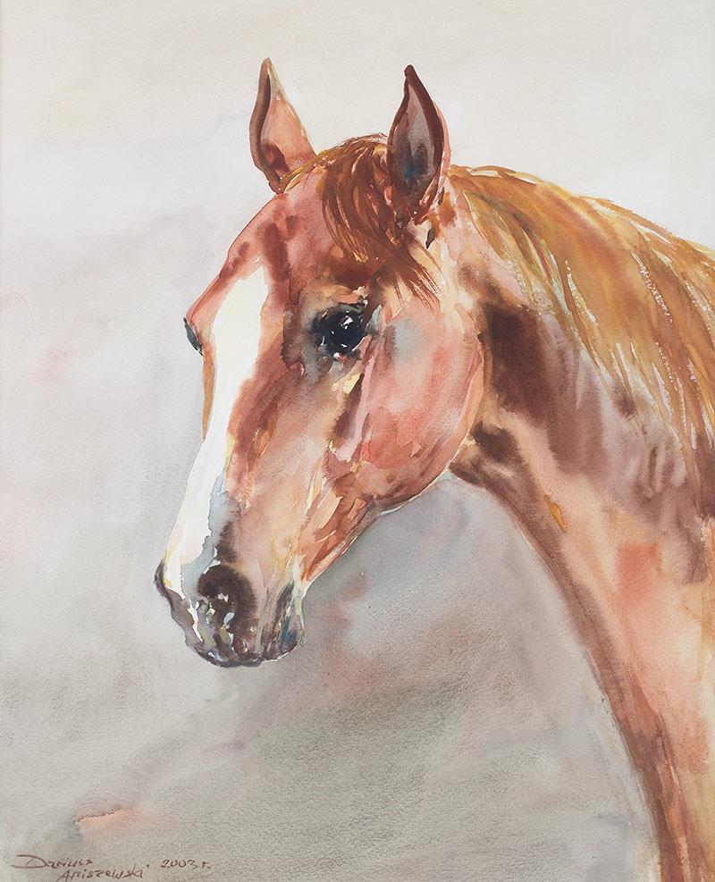 Głowa konia, 2003 r.