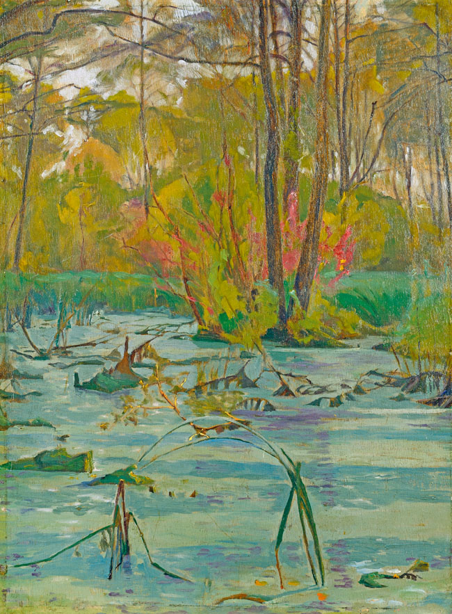 JEZIORKO LEŚNE, 1913